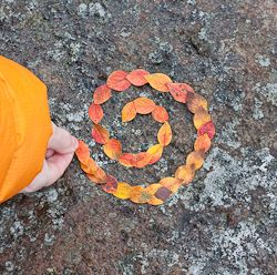 Land ARt for Kids.  Great Website with ideas for creating fleeting art with natural materials outdoor.
