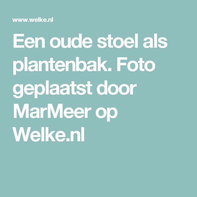 Een oude stoel als plantenbak. Foto geplaatst door MarMeer op Welke.nl