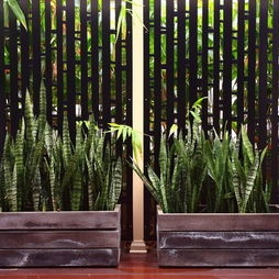 22 best images about aziatisch tintje on pinterest asian for Aziatisch interieur