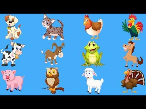Учим животных для малышей картинки