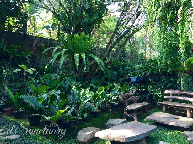 d'Sanctuary, Bogor - Indonesia