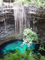 Panoramio - Photo of Nouvelle Caledonie Maré Trou de Bone JC