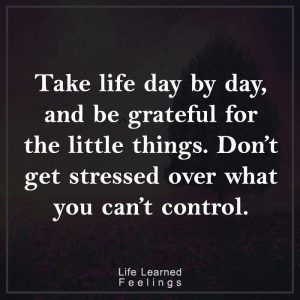 Frienship Quotes, Take life day by day and be grateful for the little things don't get stressed ov