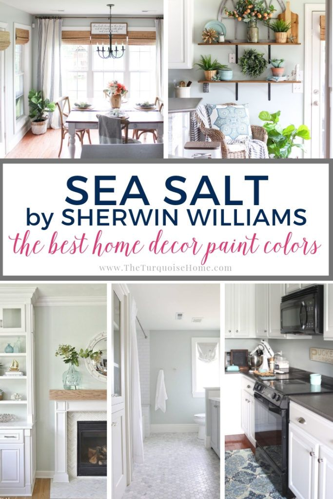 Blue And Gray Living Room Decor: Best Home Decor Paint Colors: Sherwin Williams Sea Salt