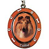 Collie Key Chain 'Spinning Pet Key Chains'Double Sided... *** You can find more details by visiting the image link.