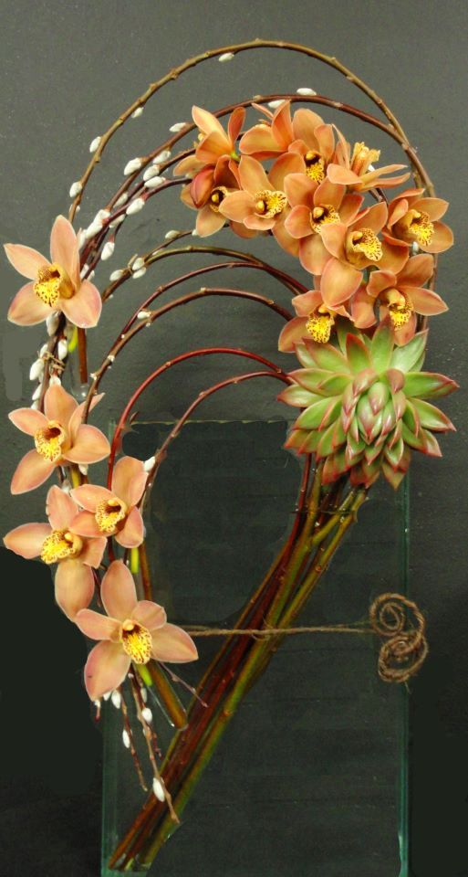 387719_324035470960117_538598244_n.jpg (513×960)  wow! I've got twisted kiwi branches that would make outstanding centerpieces, bouquets and wreaths!  PJ