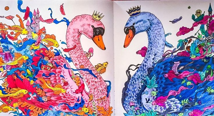 Two swans, male and female, from the book imagimorphia  coloured by Judy Boechler
