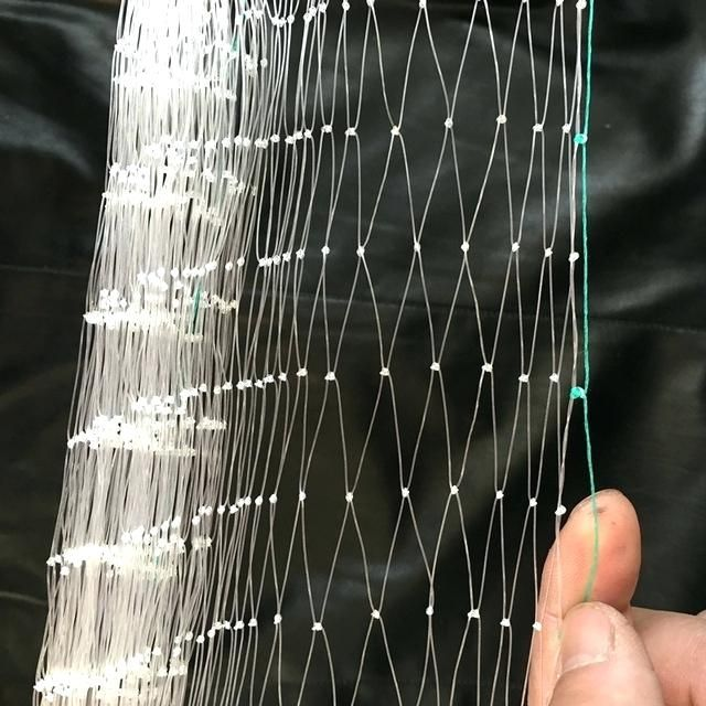 Looking For Pigeon Safety Netting Installation Services For Balconies Online Hicare Specializes In Residential Bird N Bird Netting Orchard Garden Fruit Trees