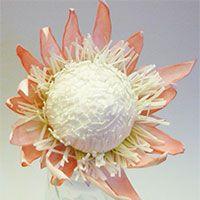 Экзотические цветы из фоамирана