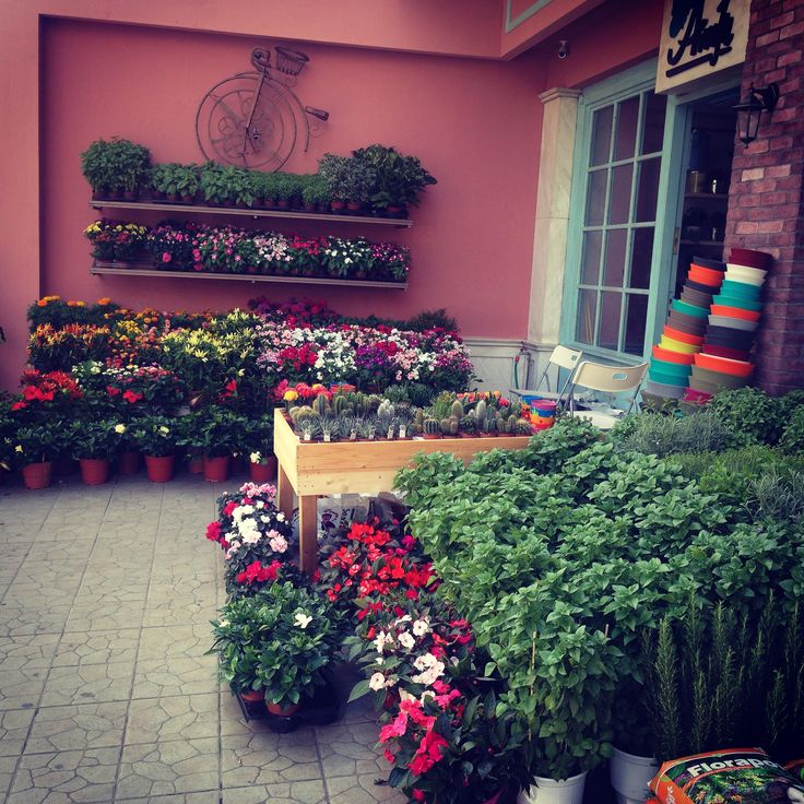 Our flowershop in Athens, Greece! Alexandra 104, +302106422139. flowers, flowershop, florist, colours everywhere... french style...