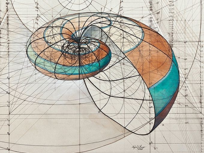 Coloring Book Celebrates Mathematical Beauty of Nature with Hand-Drawn Golden Ratio Illustrations - My Modern Met