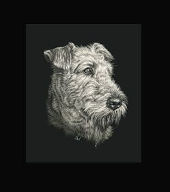 Airedale Terrier. This is the actual size of the scratch art. This size is intended as example of a memorial for an urn. Smaller work can easily be done for a pendant or jewellery.  A web site dedicated to this is planned. In the mean time I can be contacted at sue@suewalters.com #airedale