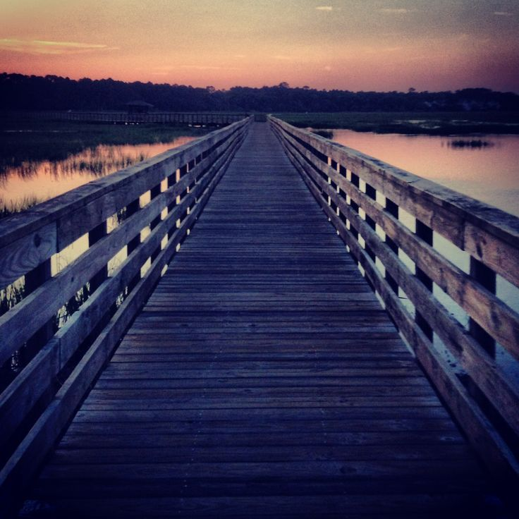 Camping At Huntington Beach State Park: 17 Best Images About Huntington State Park,SC On Pinterest
