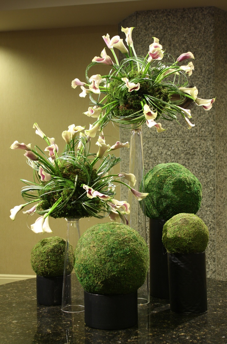 """Planet Calla"" Calla lilies randomly shoot out of moss covered spheres. Loops of bear grass complete the look."