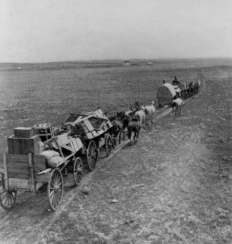 Settlers from the United States crossing the western Canadain prairies, heading for the wheat fields. Saskatchewan Archives Board R-B9806/Library and Archives Canada