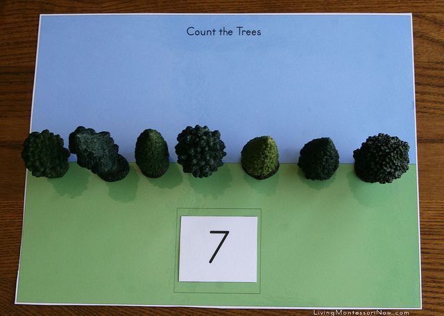 Montessori-Inspired Arbor Day Activities (perfect for Earth Day, Arbor Day, or a tree unit study at any time)