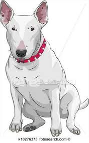 Image result for dog breed drawing