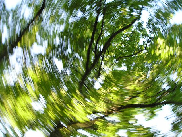 VERTIGO HIGH - Squat and breathe slowly. Then jump back up. Your blood pressure will go down and create dizziness. The little high for inbetween.
