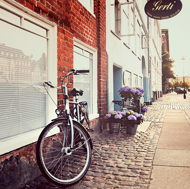 Cycling (Denmark). 'You needn't embark  on lengthy tours of the country to enjoy  cycle touring. The cities are a breeze to pedal  around, and many have a public bike-sharing  scheme with free bike usage. Nearly 40% of  Copenhagen commuters travel by cycle – it's  easy to follow their lead.' http://www.lonelyplanet.com/denmark/copenhagen