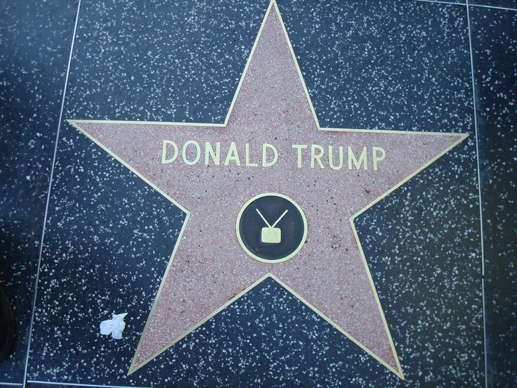 WALK OF FAME STAR | File:Donald Trump star Hollywood Walk of Fame.JPG - Wikipedia, the ...