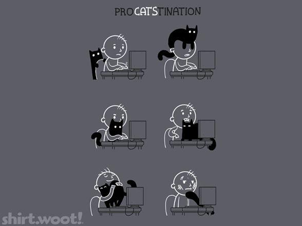 ProCATStination