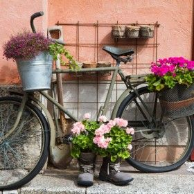 28 best bicicletas con flores images on pinterest for Como decorar mi jardin con plantas