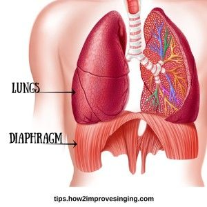 How to sing from your diaphragm? Find the answers here: http://tips.how2improvesinging.com/how-do-i-sing-from-my-diaphragm/