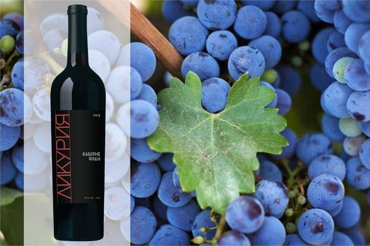 Каберне Фран — один из старейших сортов французского региона Бордо, согласно последним исследованиям ДНК, имеет испанское происхождение. Сейчас Каберне Фран прекрасно чувствует себя и на юге России — в Краснодарском Крае. Из него получаются более мягкие по структуре и менее танинные вина, чем из сорта Каберне Совиньон, но при этом они значительно более насыщены, чем вина из сорта Мерло. Из него мы делаем замечательное вино «Ликурия Каберне Фран» красивого бордового цвета.