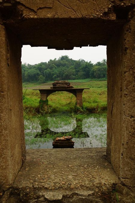 window of reflection Photo by Helen Pepi -- National Geographic Your Shot