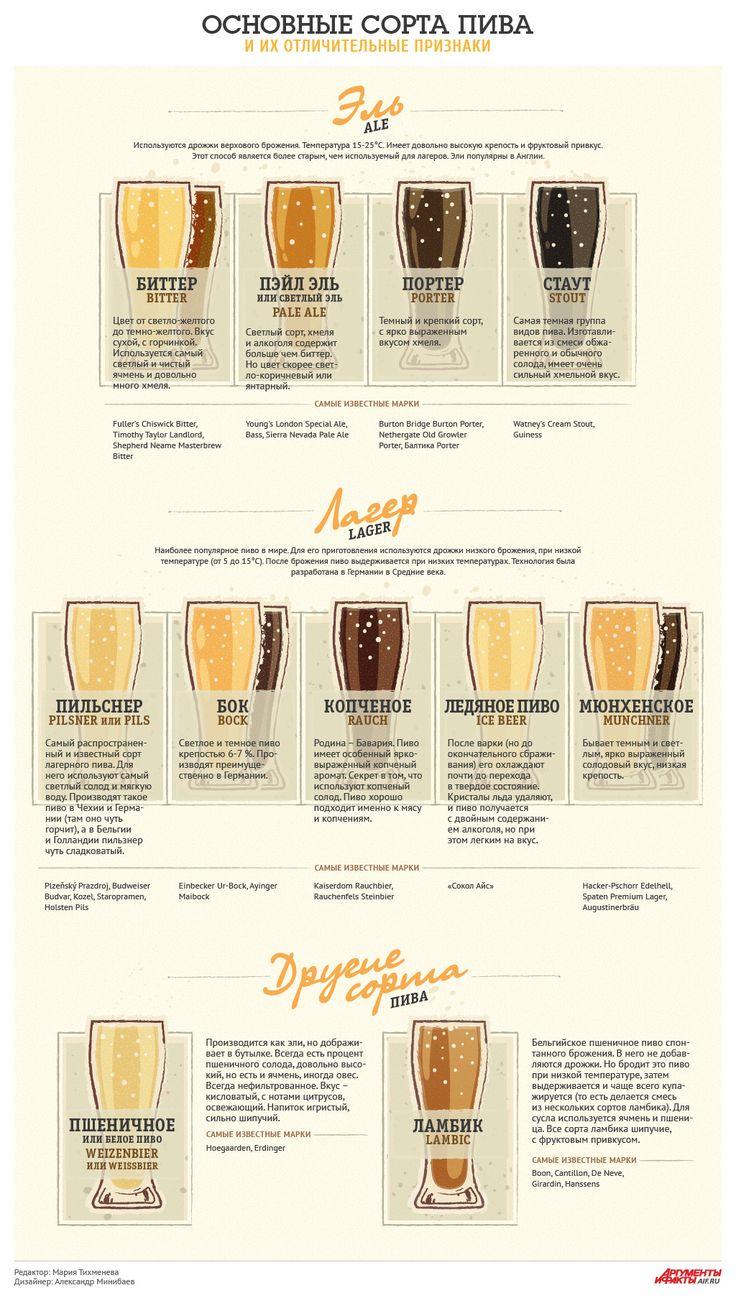 Чем отличается лагер от эля? Основные сорта пива и их признаки. Инфографика - Продукты и напитки - Кухня - Аргументы и Факты
