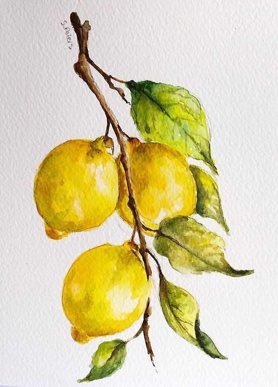 Original Watercolor Painting, Rustic Painting, Lemon Fruit, Farmhouse Decor 6×8 Inch- Joan McMillan