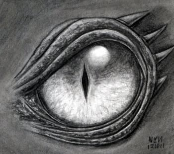 how to draw a dragon eye