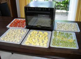 Sedona Dörrgerät - Obst vor dem Trockenvorgang