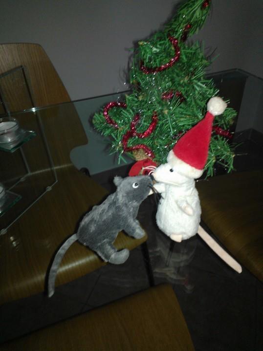 Merry Christmas!!!!  https://www.facebook.com/LucillaCumanPhotography?ref=hl