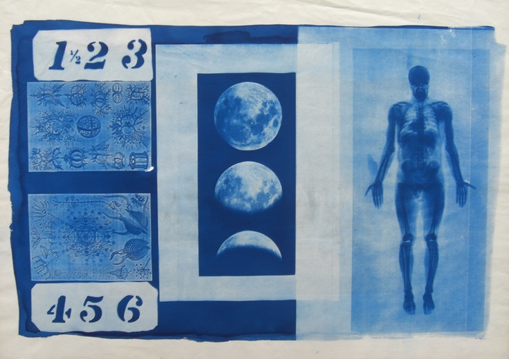 Love this cyanotype