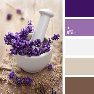 beige, blanco sucio, color lila, color negro madera, de lavanda, elección del color para el interior, marrón, matices de color lavanda, paletas para el diseño de interiores, púrpura oscuro, tonos marrones, tonos púrpura, tonos violetas.