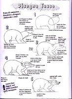Impariamo a disegnare gli animali