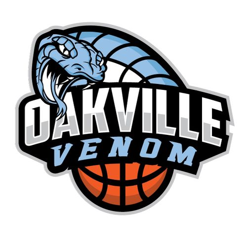 Cool Basketball Logos Designs | www.pixshark.com - Images ...