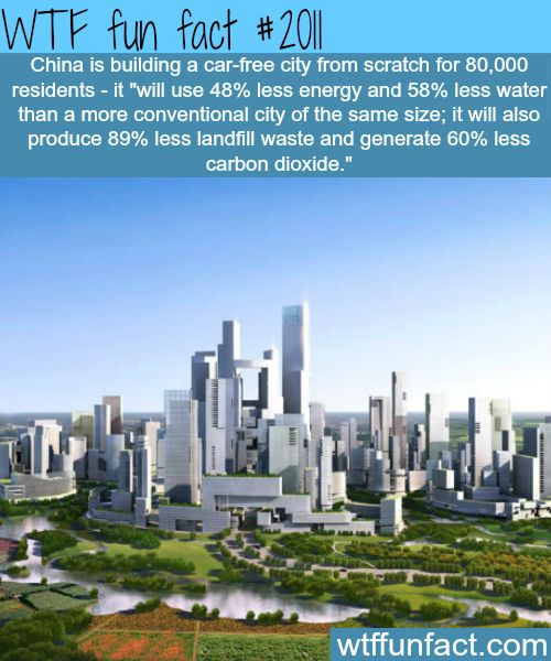 China is building a car-free city - WTF fun facts