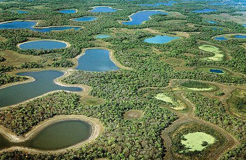 Pescaria no Pantanal, Sul Matogrossense | Melhor Amiga