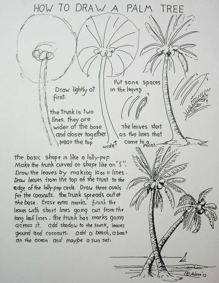 how to draw palm trees on the beach