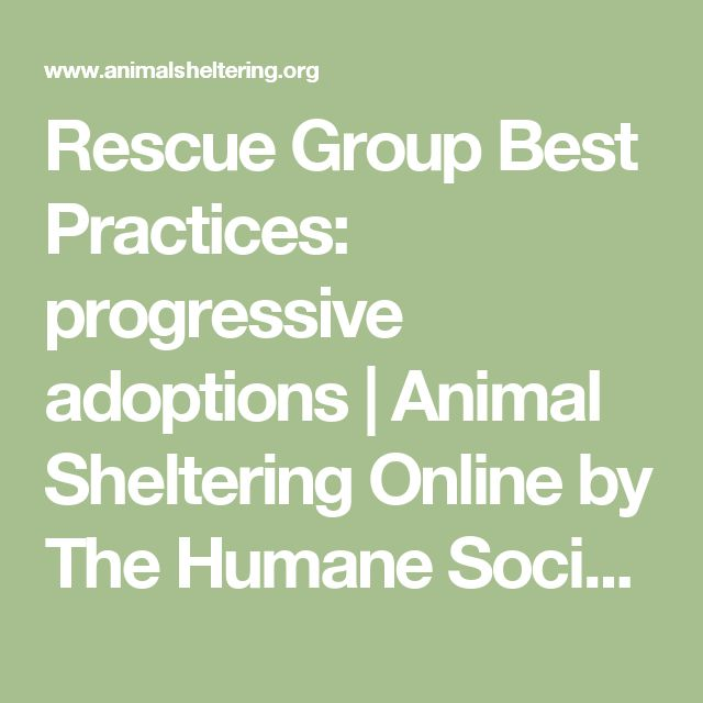Rescue Group Best Practices: progressive adoptions | Animal Sheltering Online by The Humane Society of the United States