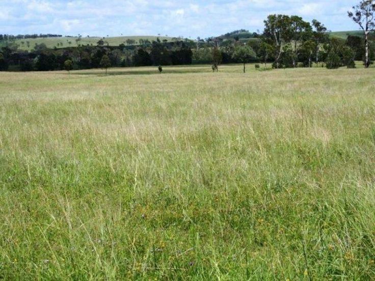 522.5 Acres  -'6' titles - c/c 80-90 adult cattle -$649,000
