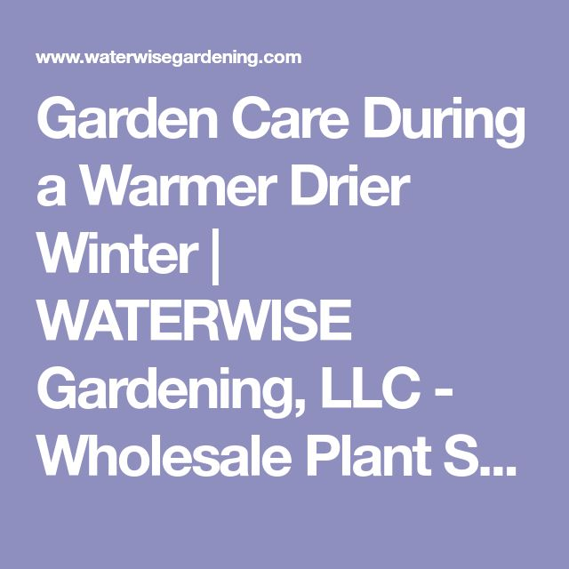 Garden Care During a Warmer Drier Winter | WATERWISE Gardening, LLC - Wholesale Plant Sales