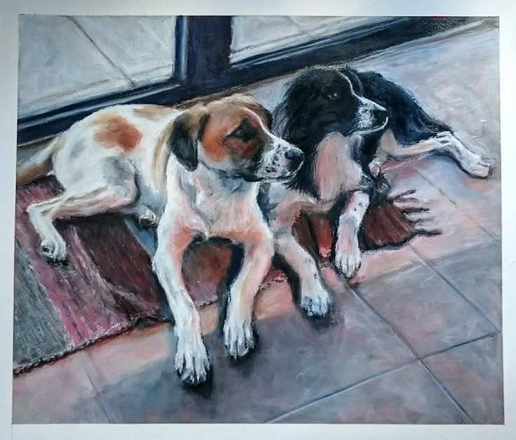 Theo and April. April the black and White dog was dumped outside our house last  April as a pup along with 4 of her sisters. She now had a super 5 star home in Austria with Theo who was also an abandoned pup. #animalart #animalpainting #animalartist #petportraitartist #petportraits #oilpastel  #workingartist #studiotime