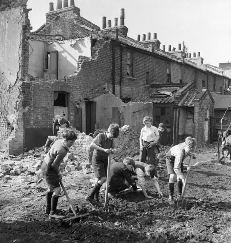 Boys clear rubble and begin to prepare the ground with spade, fork and rake, in order plant beans on a makeshift allotment on a London bomb site. The seeds they will be planting were sent to them from America.