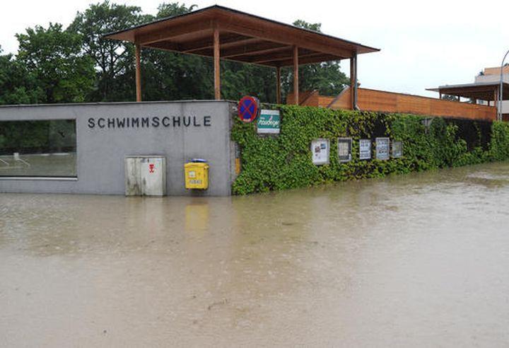 Makabre Schwimmschule