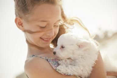 How to Find the Best Dog for Your Kids