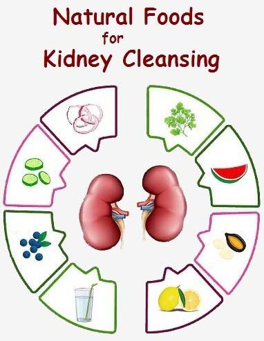 10 Super Foods That Naturally Cleanse Your Kidney