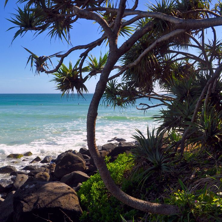 Greenmount, Gold Coast, Australia  #VisitGoldCoast #ThisIsQueensland #SeeAustralia